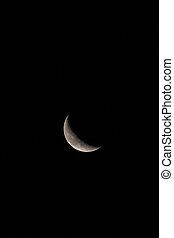 Waning Crescent Moon Vertical with Text or Copy Space