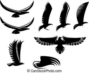 wapenkunde, black , vogels