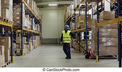 Warehouse workers pulling a pallet truck. - Young warehouse...