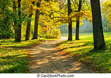 Warm autumn - Beautiful October park with trail and bench ...
