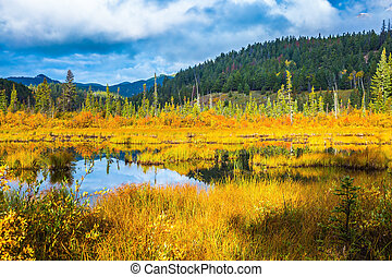 Charming Patricia Lake - Warm autumn in the Rocky Mountains ...