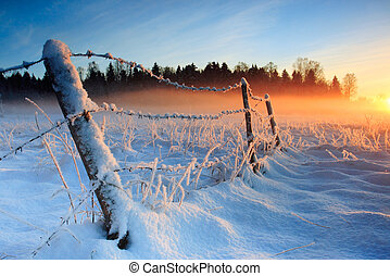 Warm cold winter sunset coloring the fog golden viewed near Harjumaa, Estonia