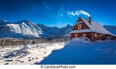 Warm cottage in winter mountain day