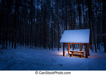 Warm shelter in a cold winter forest