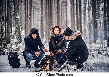 warmed, グループ, モデル, 火, ハイキング, 雪が多い, 中央, 森林, 森, ハイカー, went, 友人