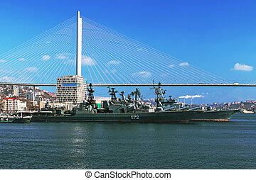 Russian cruiser in place a permanent home in the city of Vladivostok after anti-piracy patrols in the Indian Ocean