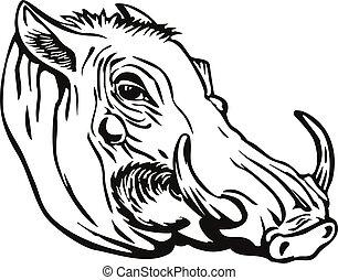 warthog, phacochoerus, nero, o, bianco, retro, comune, ...