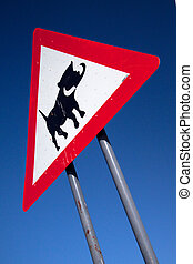 warthog sign