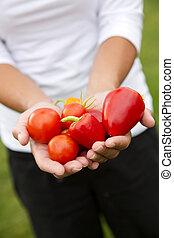 warzywa, siła robocza