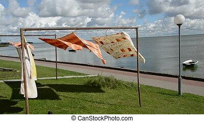 wash on clothes-line on sea coast and wind