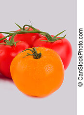 Washed clean tomatoes with water drops.