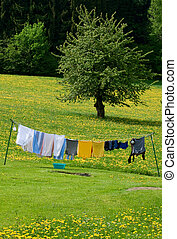 Washed Clothes on the Line in a Spring Field