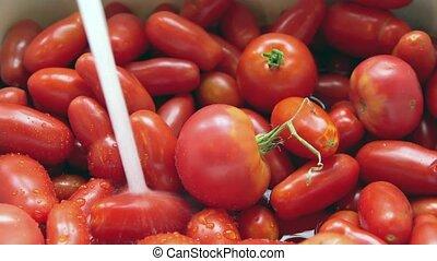 Washing fresh tomatoes