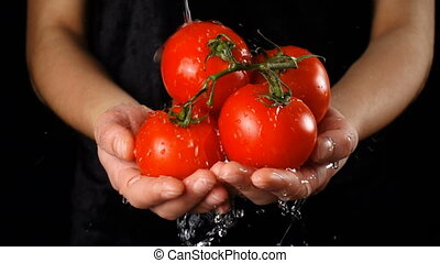 Washing the red tomatoes in woman hands, slow motion