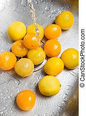 Washing yellow tomatoes and lemons