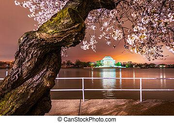 Washington, DC at the Jefferson Memorial during spring