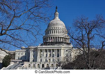 Washington DC in the Winter