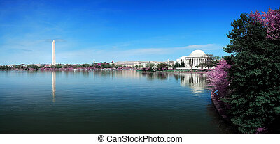 Washington DC panorama with Washington monument and Thomas Jefferson memorial with cherry blossom.