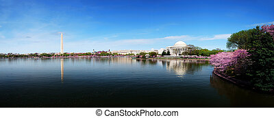 Washington DC skyline panorama with Washington monument and...