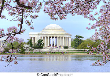Washington DC - Thomas Jefferson memorial framed with ...