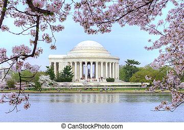 Washington DC - Thomas Jefferson memorial framed with...