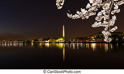 Washington Monument across Tidal Basin during cherry blossom...