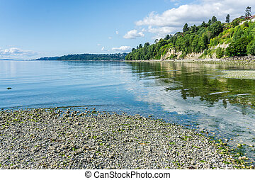 Washington Park Shoreline6 9 - A view of the shoreline at ...