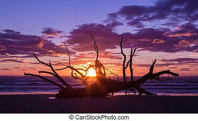 Washup Sunset