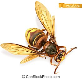 Wasp, bee, hornet. 3d realistic vector