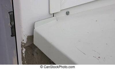 Wasp building nest. - many wasps fly under white window...