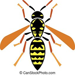 wasp insect vector