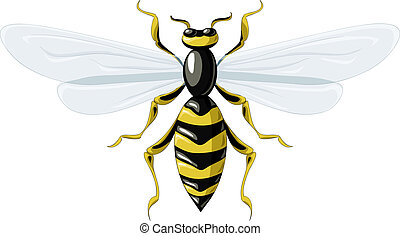 Wasp on a white background, vector illustration