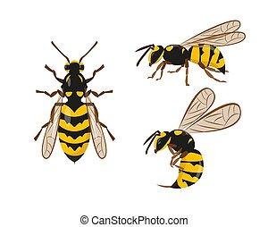 Wasp or hornet icons set vector illustration.