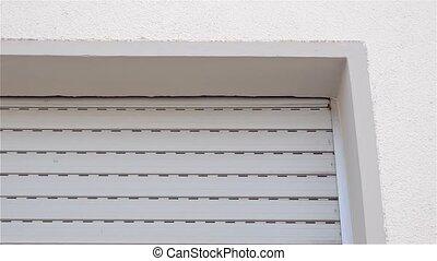 Wasps' nest by the window in the wondows shutter box - Slow...
