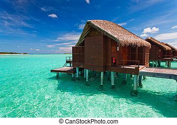 wasser, aus, tropische , bungalow, schritte, lagune