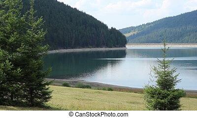 Wasser, Damm, See, wald