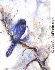 wasser- farbe, zeichnung, von, a, vogel