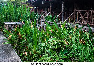 wasser, kanchanaburi, oben, hütten, thailand