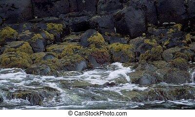 wasser, spritzen, auf, basalt, steine, riesig, damm, nordirland, -, 200fps, echte , slowmo, -, eingestuft, version