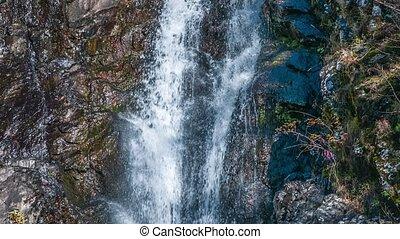 wasserfall, strömend, aus, a, cliff., abkhazia