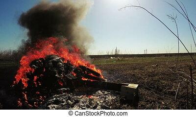 Waste incineration - Field forest near landing burn trash