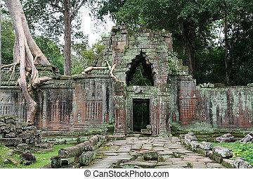 wat, ruinas, angkor