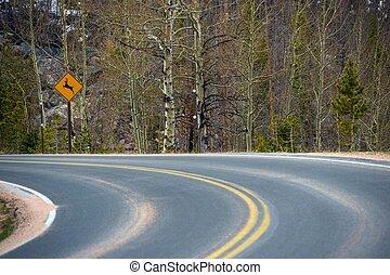 Watch For Deer Road Sign