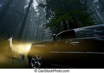 Watch For Wildlife. Large SUV in Front of a Deer in Deep...
