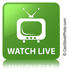 Watch live soft green square button