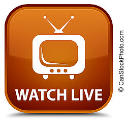 Watch live special brown square button