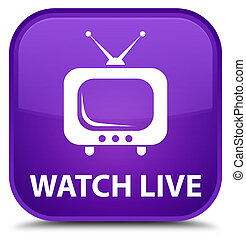 Watch live special purple square button