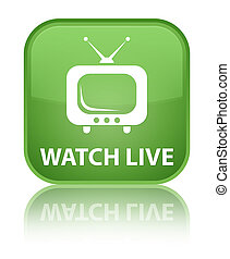 Watch live special soft green square button
