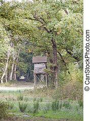 Watchtower in forest - Forest landscape, wooden watchtower...