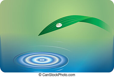 Water and grass background